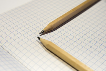 two pencils lie on a piece of paper in a cage, close-up, checkered background