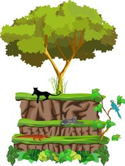 Wildlife nature concept vector illustration, animals and plants on the piramyds ground