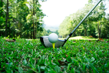 Golf ball and golf club in beautiful golf course with sunset background. Golf ball on green in golf course at Thailand