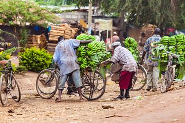 Obraz help to load bananas at street market in tanzania - fototapety do salonu