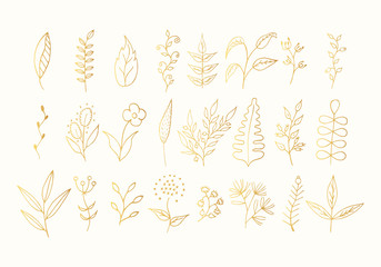 Hand drawn floral branches, golden leaves and flowers set. Gold botanic borders. Vector isolated elements. Wedding dividers for invitation card. Wall mural