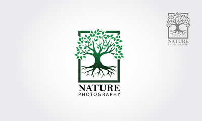 Green tree photography Logo template. Clean and modern style on white background - Vector