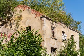 Maison abandonnée recouverte en partie par la végétation