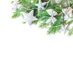 Spruce green branches isolated on white background