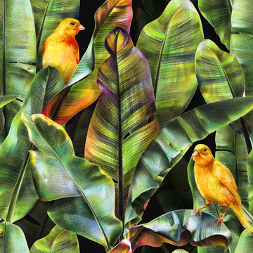 Seamless pattern with banana leaves and yellow birds on a dark background. Tropical background for fabrics, wallpapers, textiles. Illustration with colored pencils.