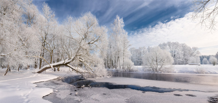 Winter Lace: Realistic Panoramic Christmas Landscape In White Tones With Icy River, Surrounded By Whitetail Trees And Deep Blue Sky.   Landscape With Frosty Forest, Beautiful Frozen River And Glade