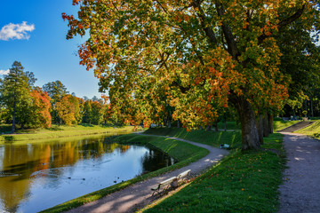 Sunny autumn day in the Park in Gatchina.