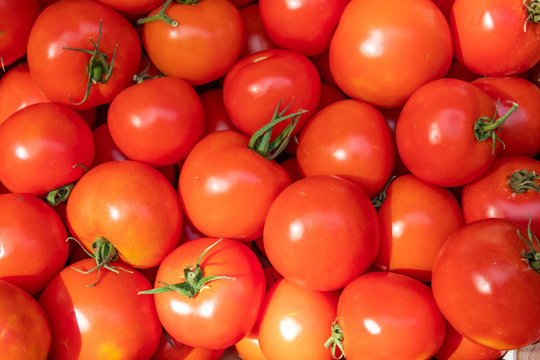 Pile of fresh red tomatoes