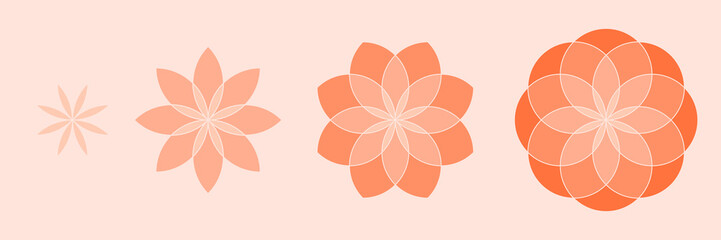 Four flowers on pink background