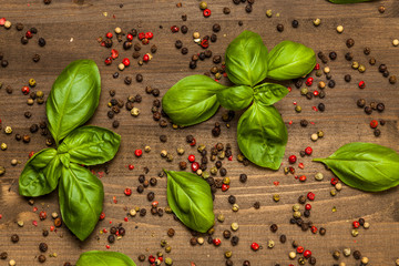 Mixed colors of pepper grains with basil leaves on dark wood