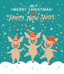 Three pigs. Very cute pigs in holiday hats rejoice in falling snow. Christmas illustration with cute cartoon pigs. Merry Christmas and Happy New Year! Year of the Pig 2019.