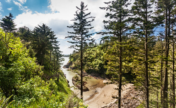 Deadman's Cove, viewed from the path along the cliff to Cape Disappointment lighthouse, Long Beach, Washington