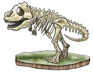 T-rex Bones