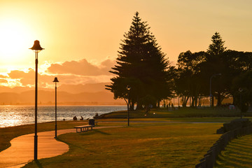 A quiet sunset along the beach path in Gisborne, New Zealand.