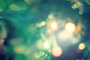 Abstract bokeh light bulb and blurred green christmas tree background