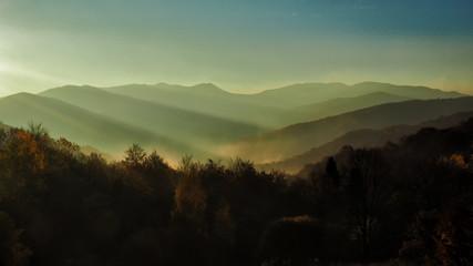 Autumn in the primeval forest. Bieszczady Mountains. Bukowe berdo and Tarnica alpine meadow