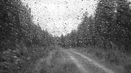 Drops of water on the glass surface. View from the cab of the car during the rain. Forest Road. Beautiful abstract.