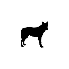 coyote vector icon. coyote sign on white background. coyote icon for web and app
