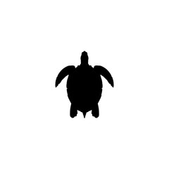 turtle vector icon. turtle sign on white background. turtle icon for web and app