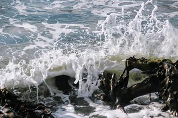 a wave breaks on a wooden stick