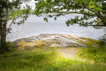 Beautiful peaceful and tranquil summer view of a path to a glade by the water with tree, grass and rock.