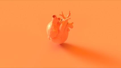 Orange Anatomical Heart Concept 3d illustration 3d render