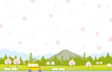ドライブ 春 桜