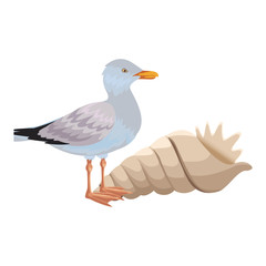 seagull with seashell