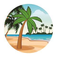 Palm tree cartoon