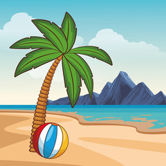 Summer and beach cartoon