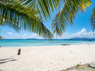 Green palm tree on a white sand beach. Malcapuya island, Coron, Philippines. November, 2018