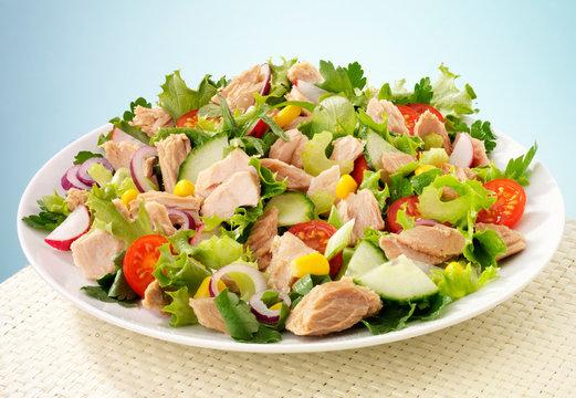 TUNA SALAD  CLOSE UP FOOD IMAGE
