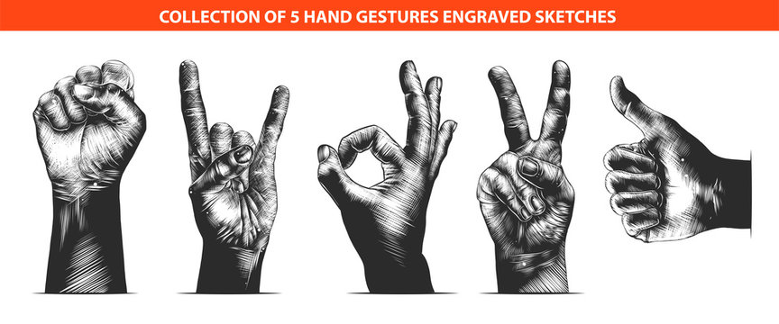 Vector engraved style hand gestures collection for posters, decoration, emblem and print. Hand drawn sketches of in monochrome isolated on white background. Detailed vintage woodcut style drawing.