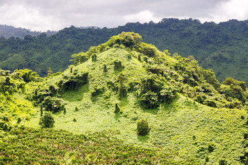 Beautiful tropical green hill overgrown with a lush tropical emerald rainforest near Fijian Savusavu town, Province of Cakaudrove, Fiji, Melanesia,  Oceania. South coast of Vanua Levu Island.