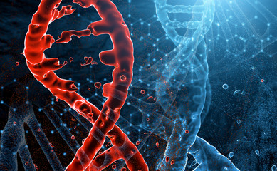 red and blue models of DNA molecules intersect in space. The decay of red DNA, the concept of virus and lesion.