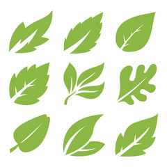 Leaves icon set. leaves logo design and  natural style symbol vector.