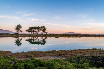 Printed kitchen splashbacks Coast Early Morning from the Crissy Field Marsh