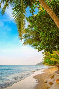 Coast of Ko Chang (Thailand)