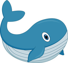 cute cartoon whale on white background