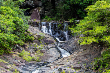 Surprise Creek Falls Close-up.