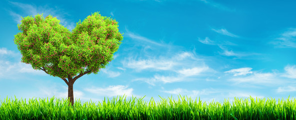 green grass and tree landscape