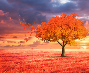 fantasy landscape with red autumn tree