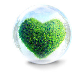 green grass heart an ecology concept