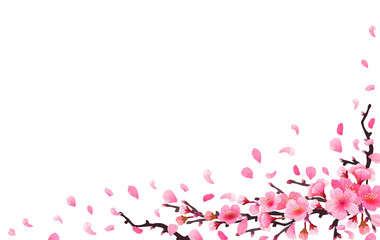 Sakura japan cherry branch Wall mural