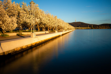 Winter morning Lake Burley Griffin