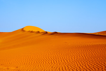 Sandy orange dune under the blue clear sky in the Namib desert Naukluft Park Sossusvlei, Namibia, South Africa
