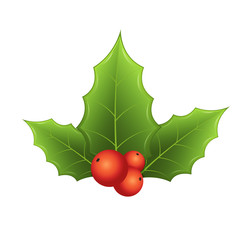 Twig of holly with leaves and red berries on white background. Festive traditional symbol, decoration for New Year wreath.