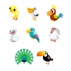 vector set of bird cartoon peacock parrot chicken
