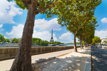 Green trees by Seine River with world famous Eiffel tower on the background