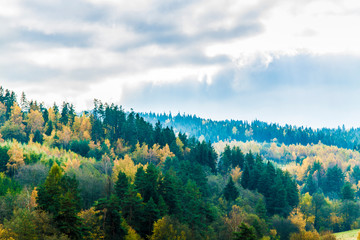 Beautiful scenery with forest, mountains and clear sky